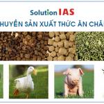 Dây chuyền sản xuất thức ăn chăn nuôi tự động